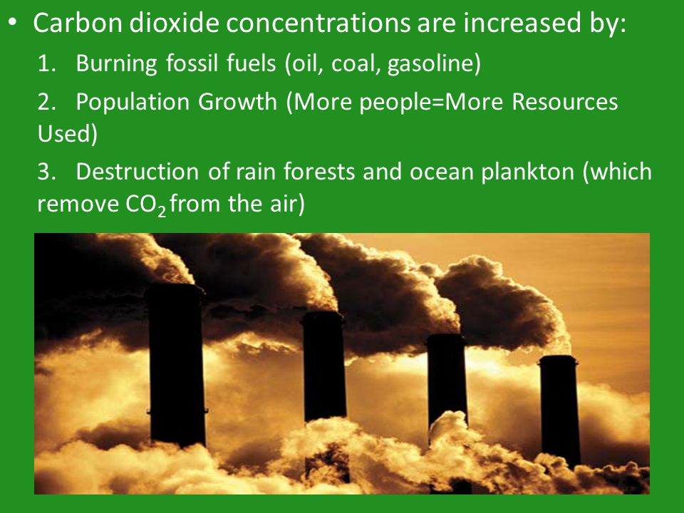 Carbon dioxide concentrations are increased by: