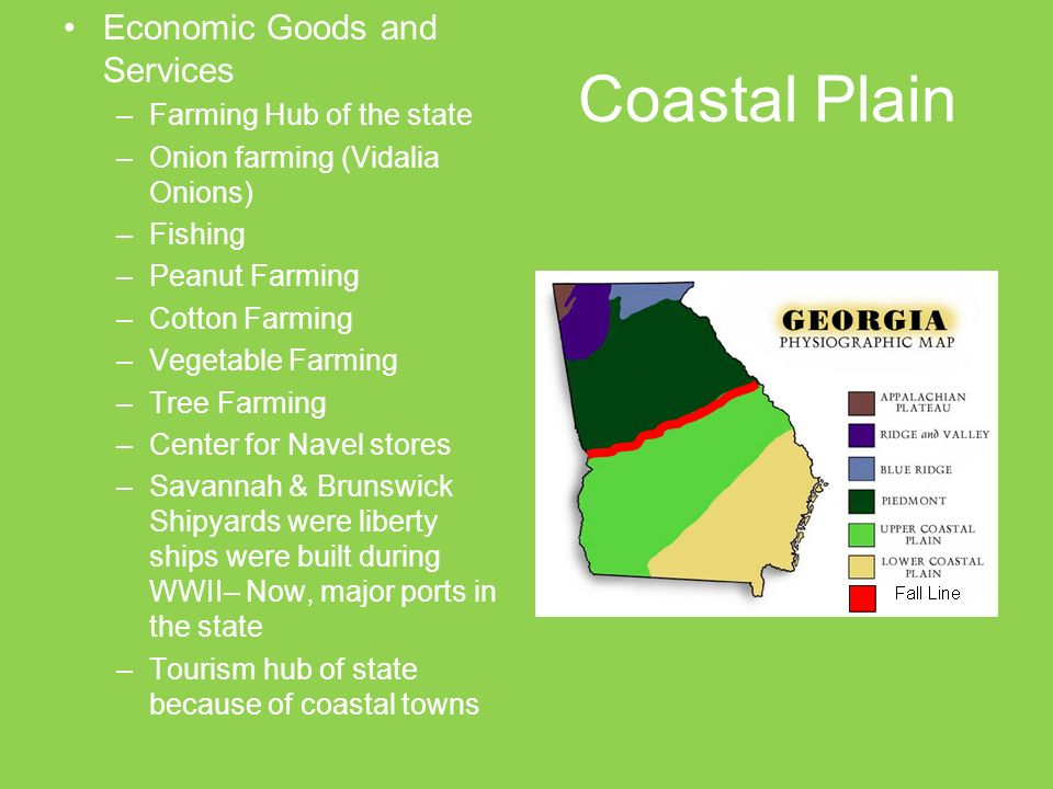 Map Of Georgia Coastal Towns.Created By Blair Weikel Adapted By Megan Rainwater Ppt Video