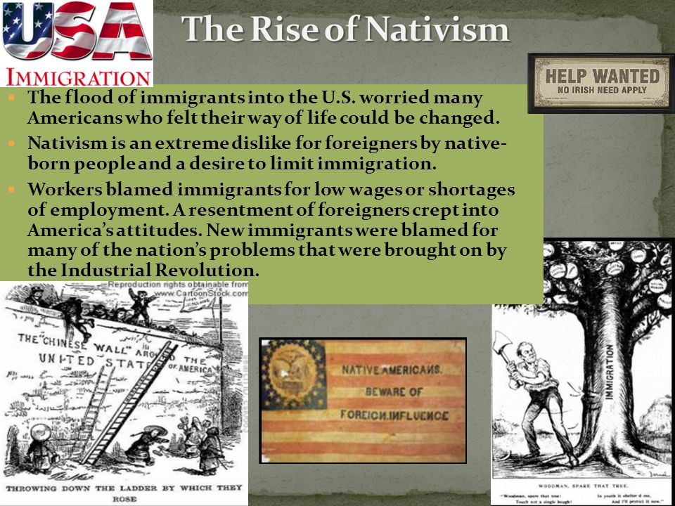 The Rise of Nativism The flood of immigrants into the U.S. worried many Americans who felt their way of life could be changed.