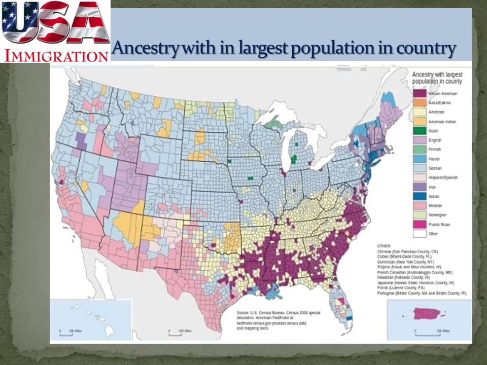 Ancestry with in largest population in country