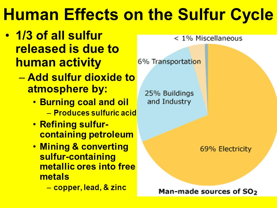 human effects on the sulfur cycle