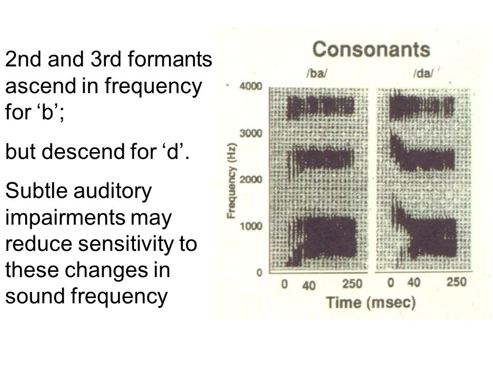 2nd and 3rd formants ascend in frequency for 'b';
