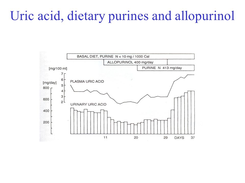 Uric acid, dietary purines and allopurinol