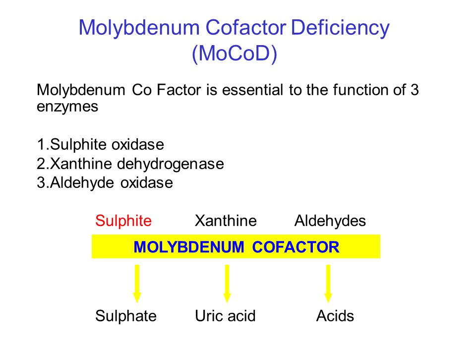 Molybdenum Cofactor Deficiency (MoCoD)