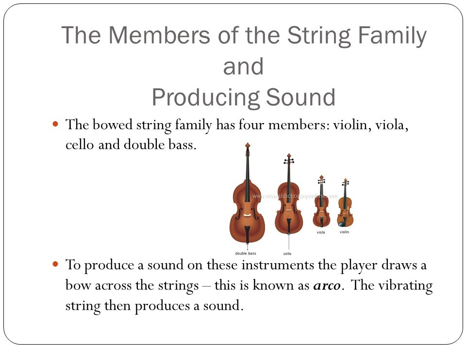 Instruments and Sound Technique - ppt download