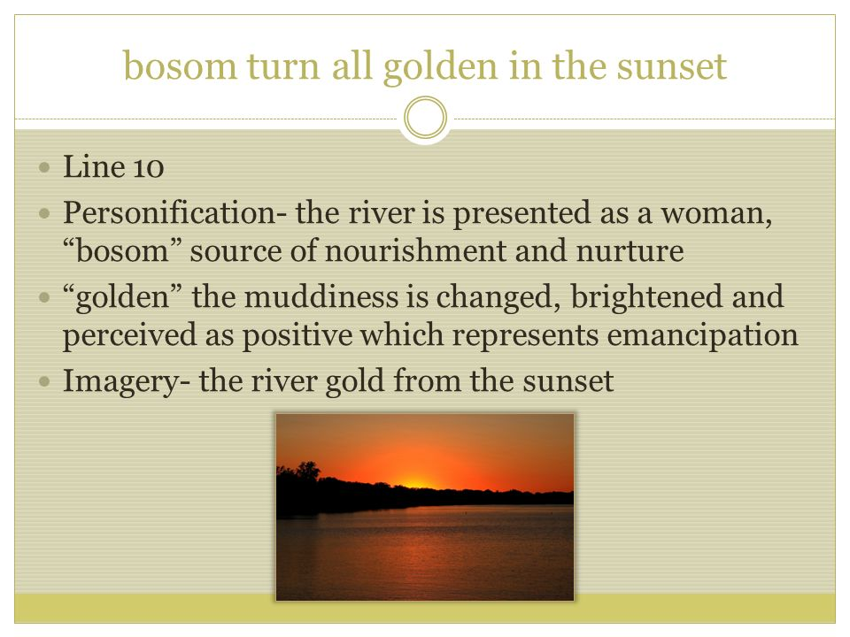 bosom turn all golden in the sunset
