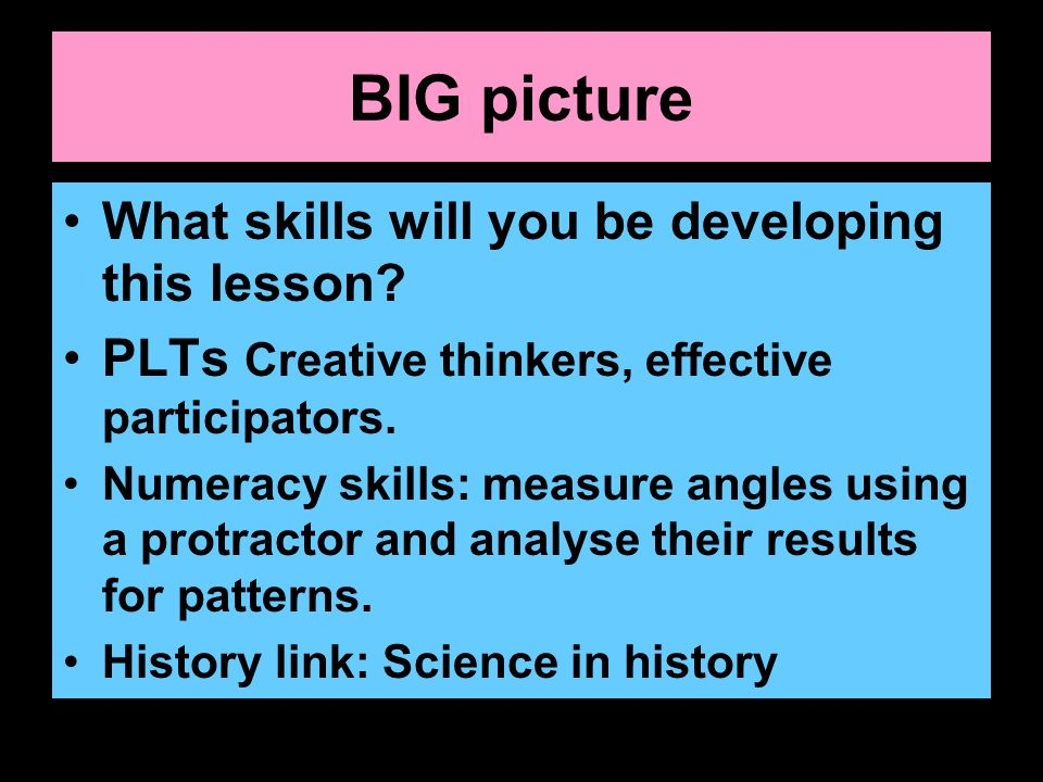 BIG picture What skills will you be developing this lesson