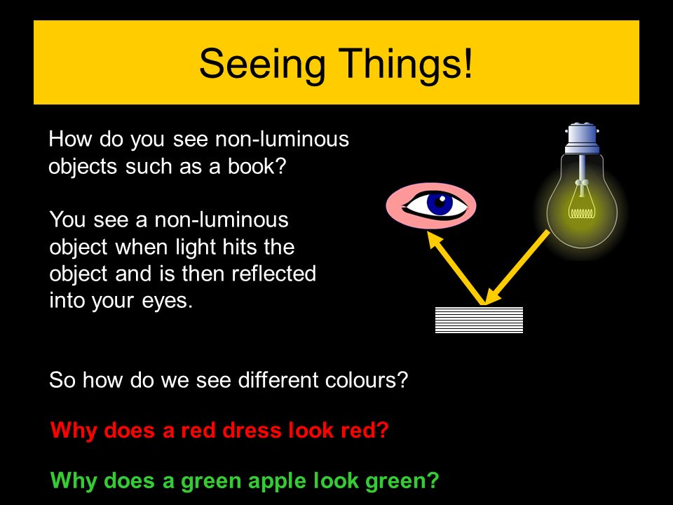 Seeing Things! How do you see non-luminous objects such as a book