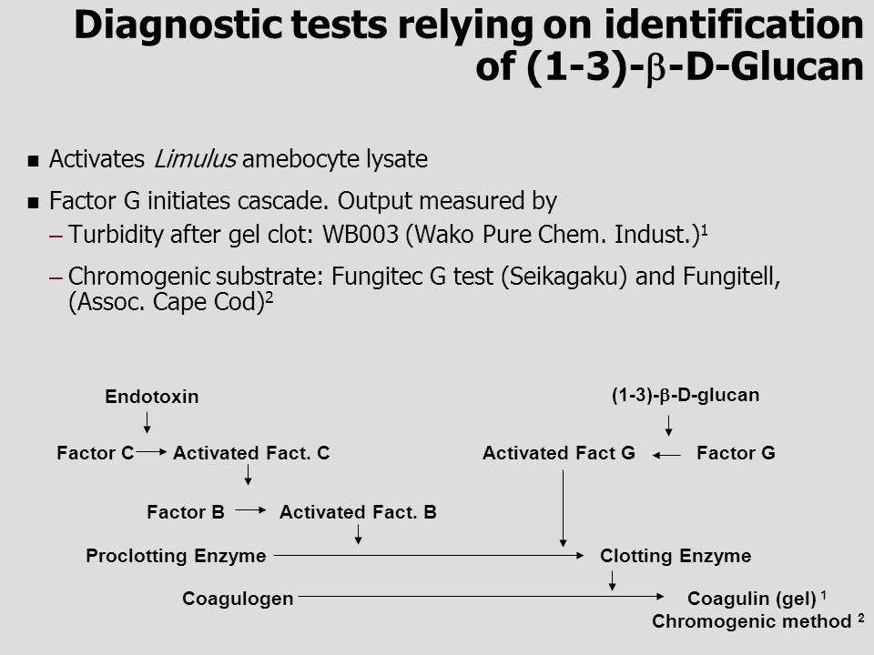 Diagnostic tests relying on identification of (1-3)--D-Glucan