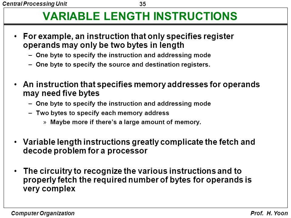 VARIABLE LENGTH INSTRUCTIONS