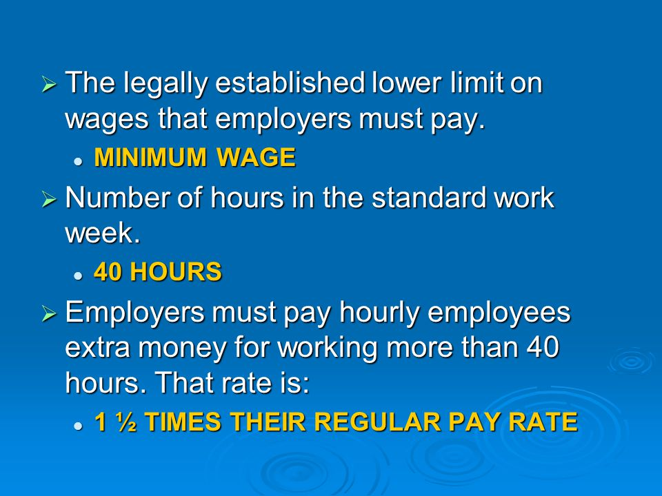 The legally established lower limit on wages that employers must pay.