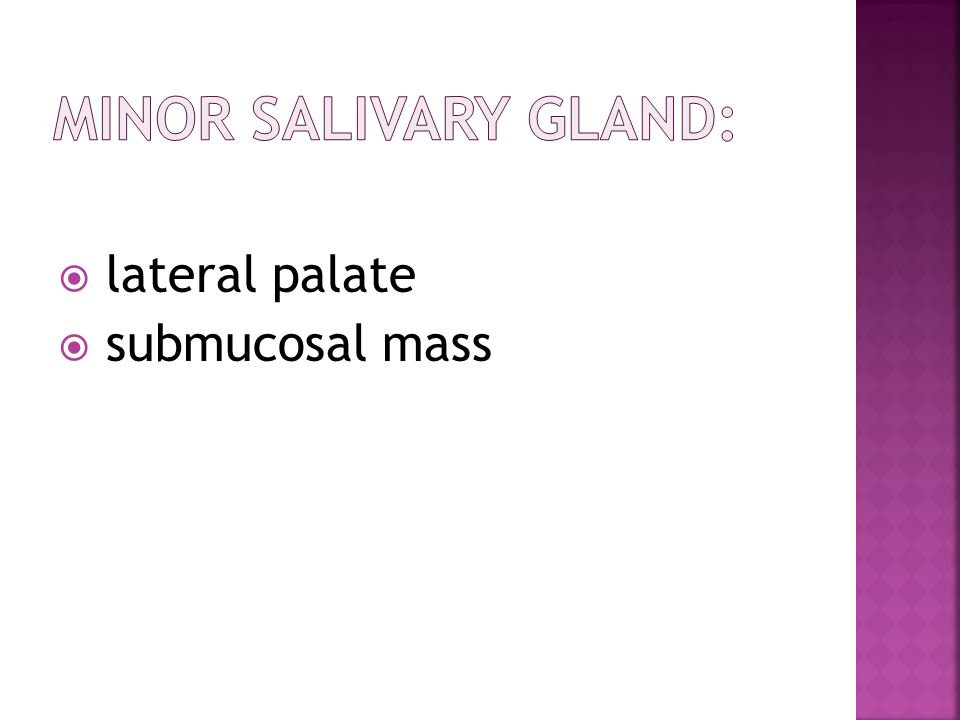 Minor salivary gland: lateral palate submucosal mass