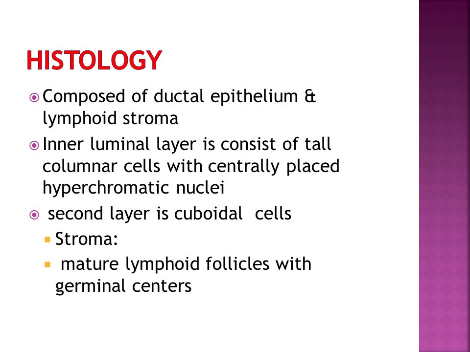 histology Composed of ductal epithelium & lymphoid stroma