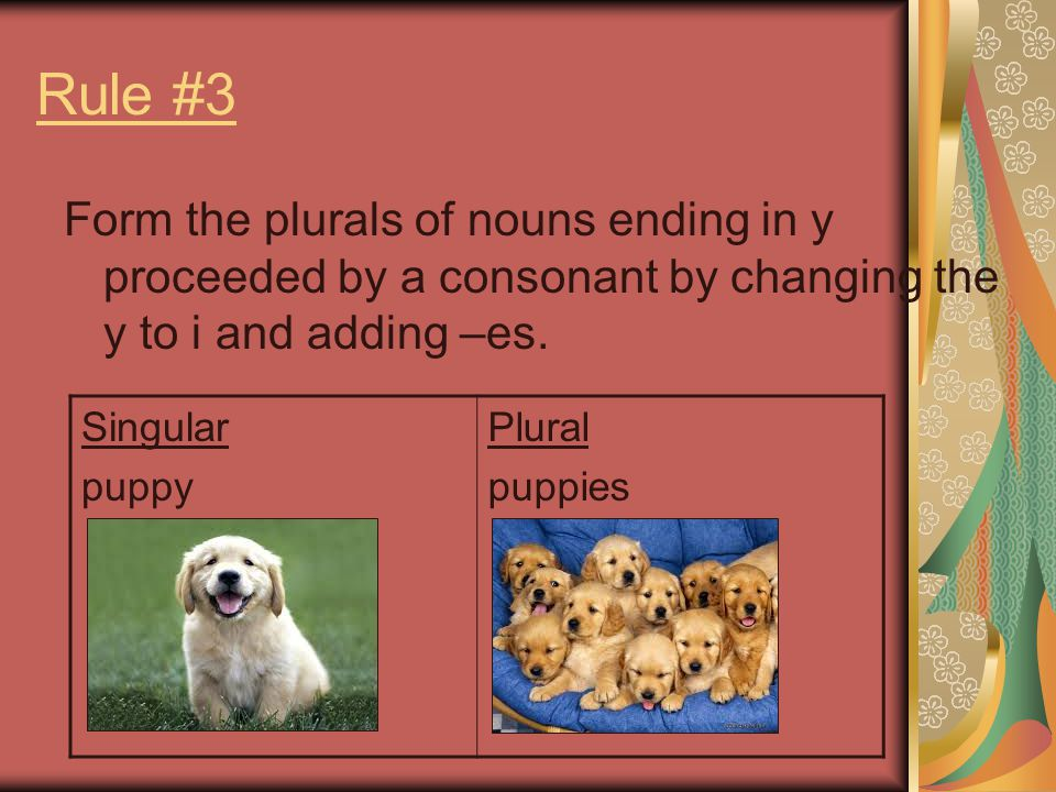 Rule #3 Form the plurals of nouns ending in y proceeded by a consonant by changing the y to i and adding –es.