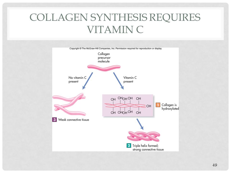 Making History With Vitamin C Powerpoint: Ppt Video Online Download
