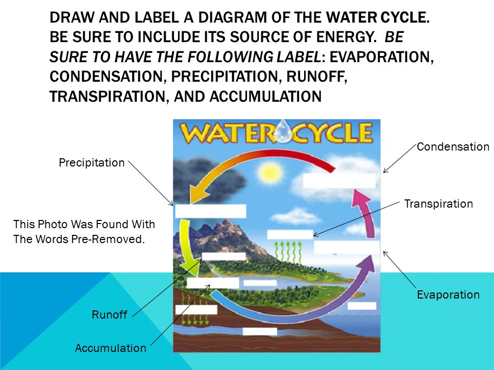 Draw And Label A Diagram Of The Water Cycle Wiring Diagram For