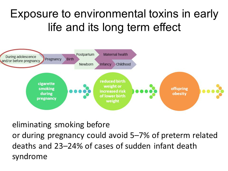 Exposure to environmental toxins in early life and its long term effect