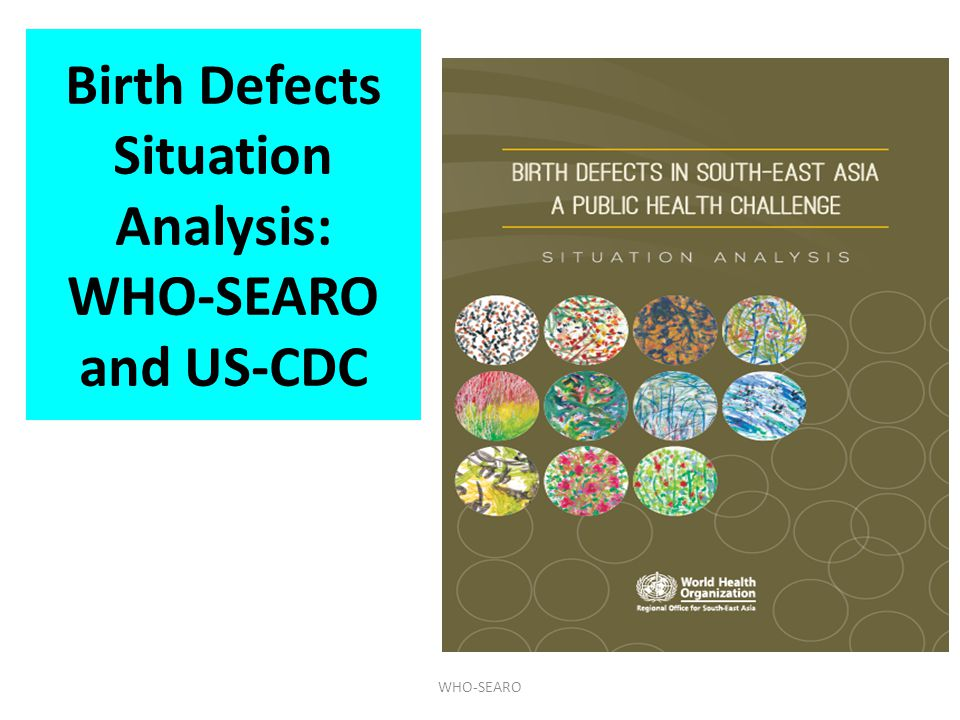 Birth Defects Situation Analysis: WHO-SEARO and US-CDC