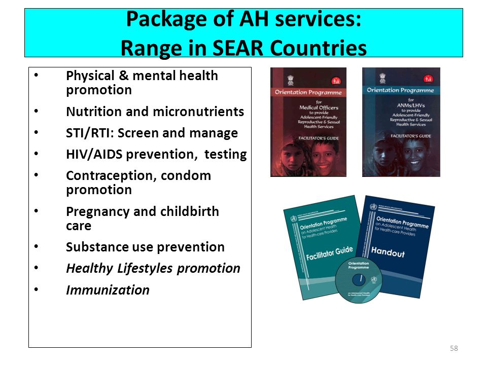 Package of AH services: Range in SEAR Countries