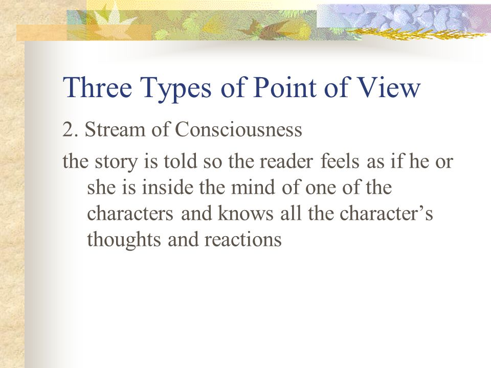 Three Types of Point of View