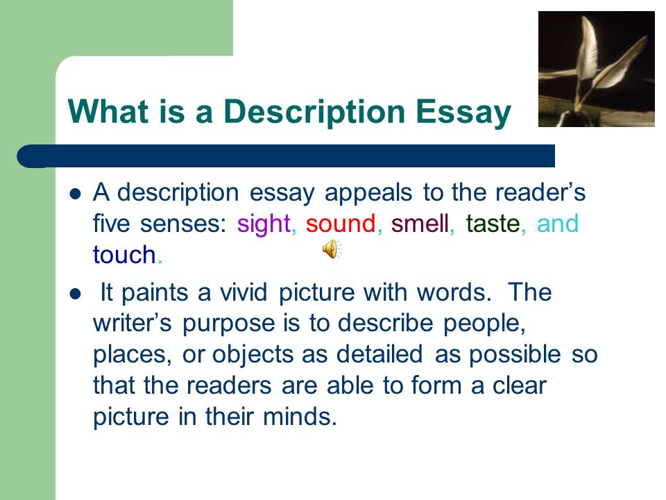 essay on senses But the truth is, the five senses have a power to connect with our readers in a deep way how to write using all five senses it's all well and good to tell you you should use the five senses in your writing.