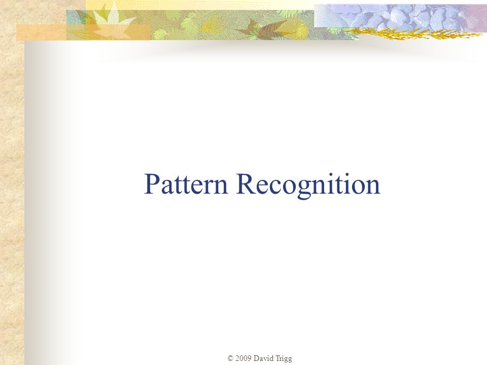 Pattern Recognition © 2009 David Trigg