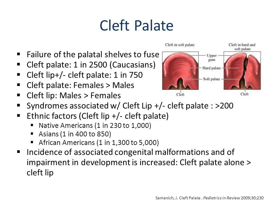 Florida Cleft Palate Craniofacial Association