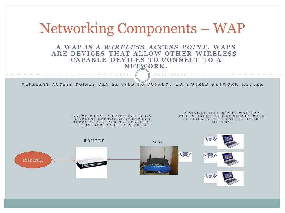 Networking Components – WAP