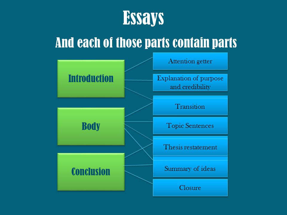 Essay On English Literature Introduction Body Conclusion Essays Contain  Main Parts  Essays  English Literature Essay Structure also Health Essay Sample Writing Cohesive Essays  Ppt Download Starting A Business Essay