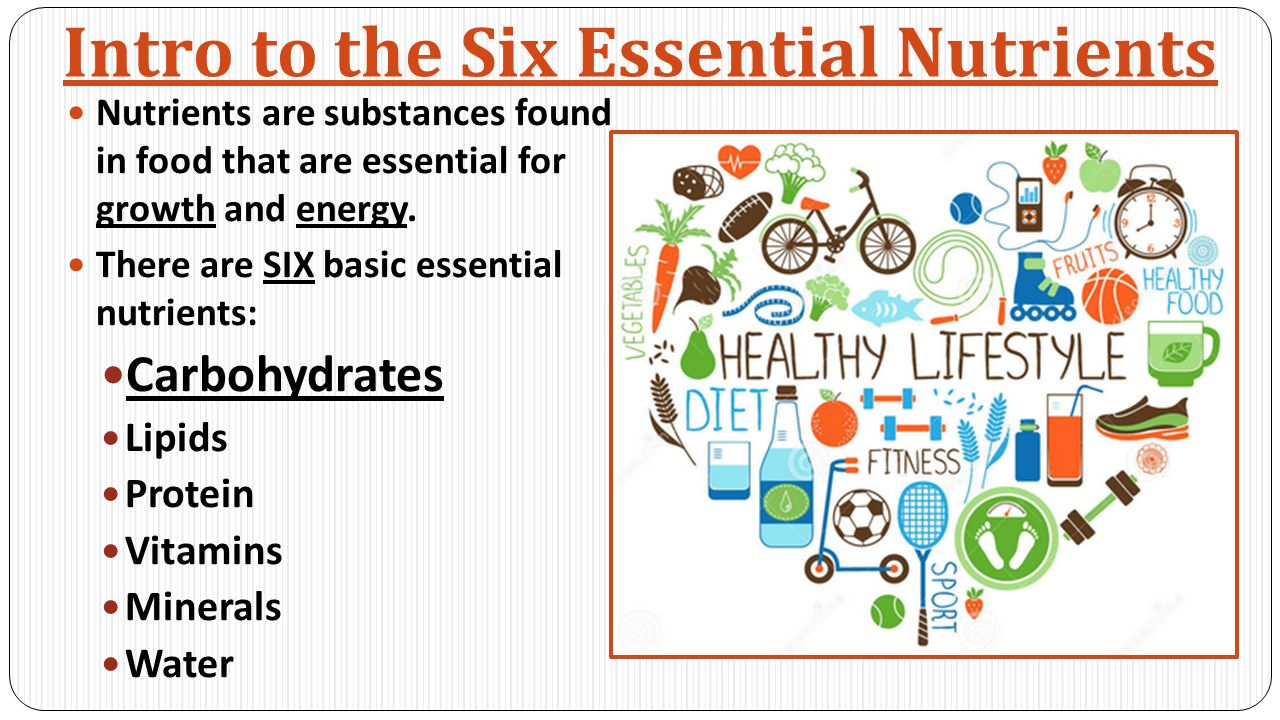 Intro to the Six Essential Nutrients