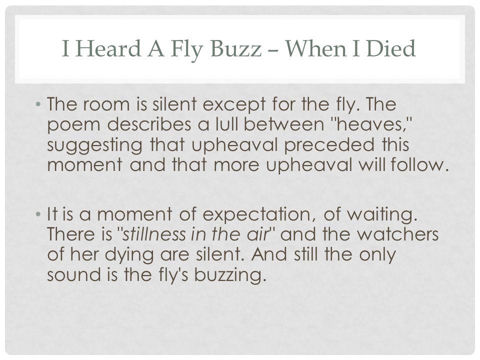 emily dickinson poems i heard a fly buzz