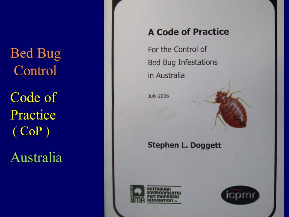 Bed Bugs A Pest Control Challenge Ppt Video Online Download