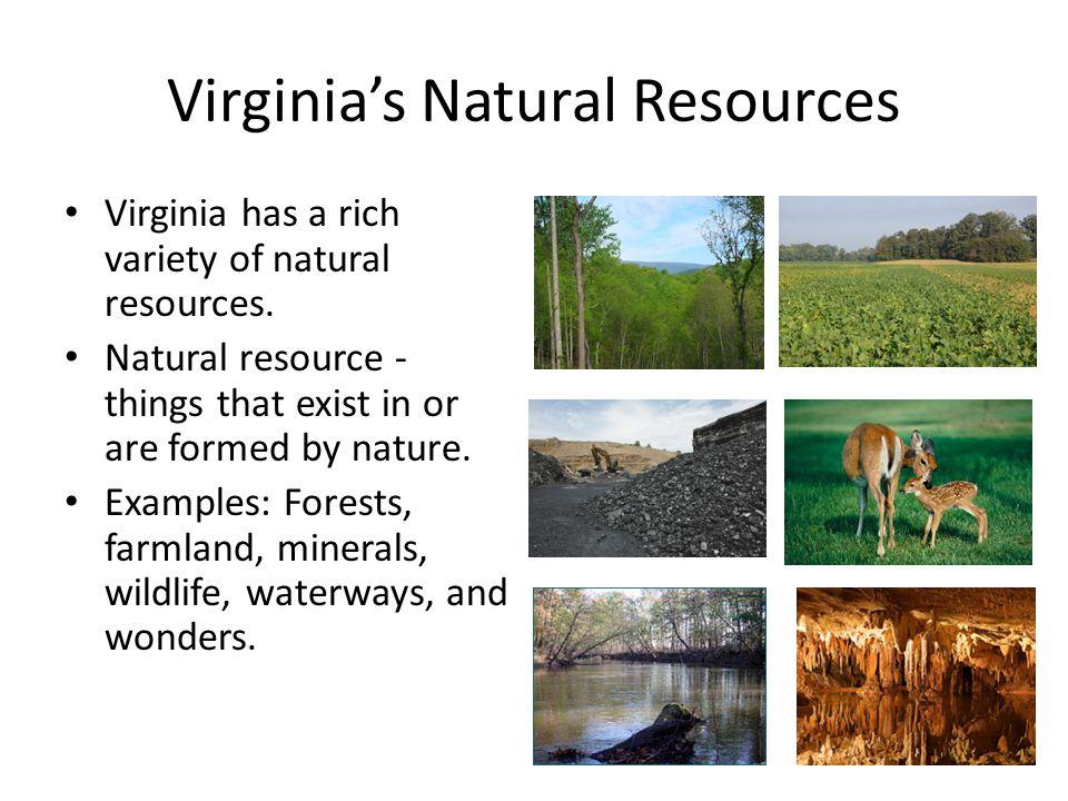 virginias natural resources