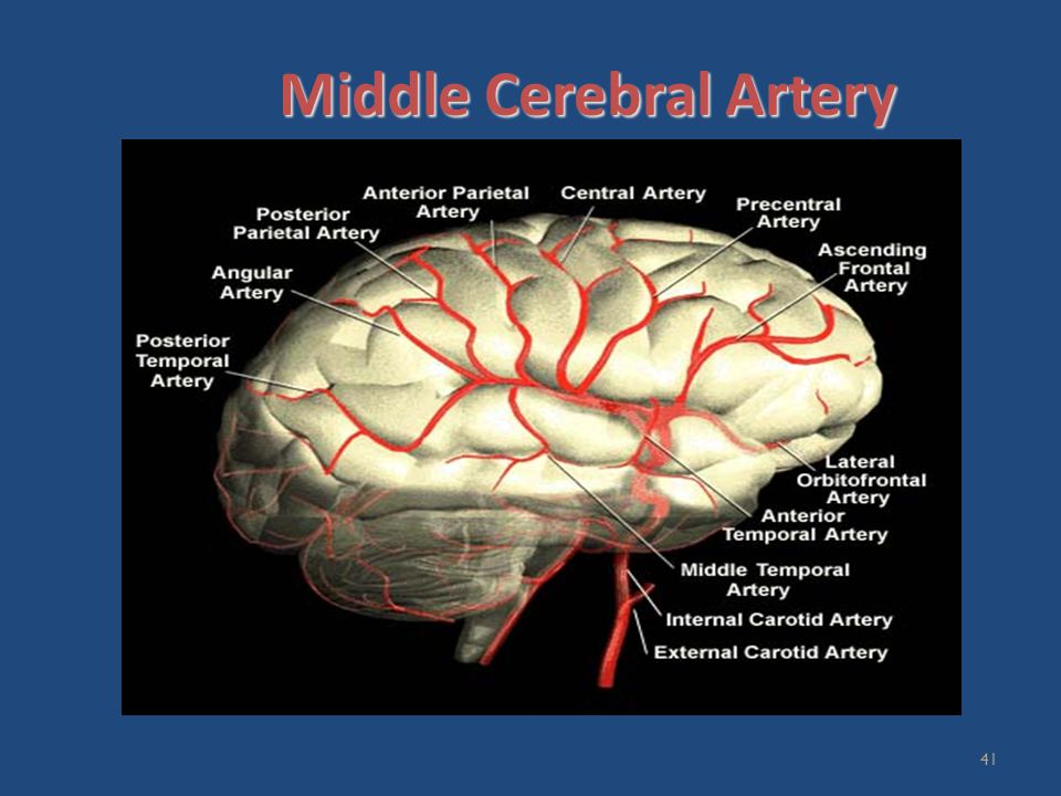 Consultant Neuroradiologist Ppt Video Online Download
