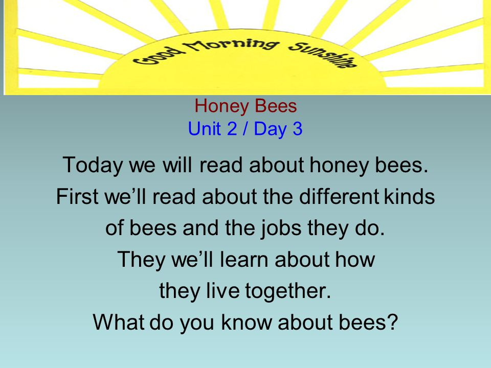 Today we will read about honey bees.