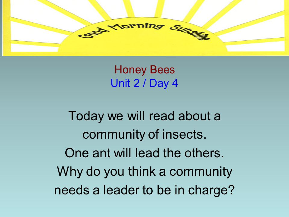 Today we will read about a community of insects.