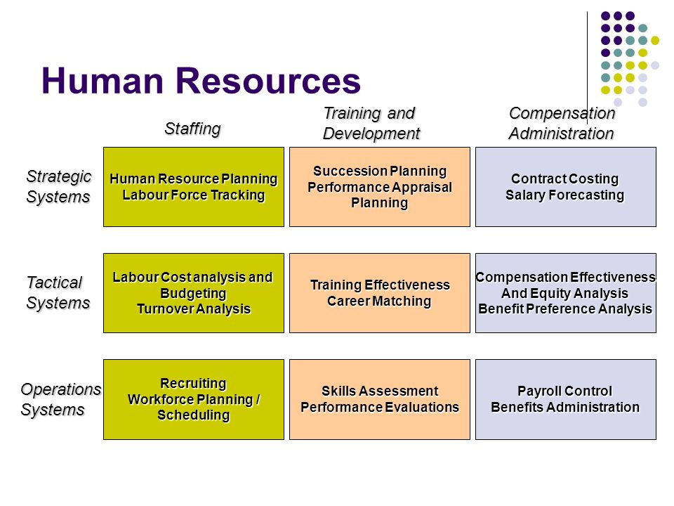 Human Resources Training and Development Compensation Administration