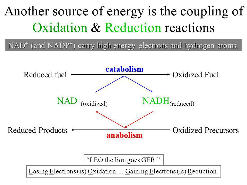 Another source of energy is the coupling of Oxidation & Reduction reactions