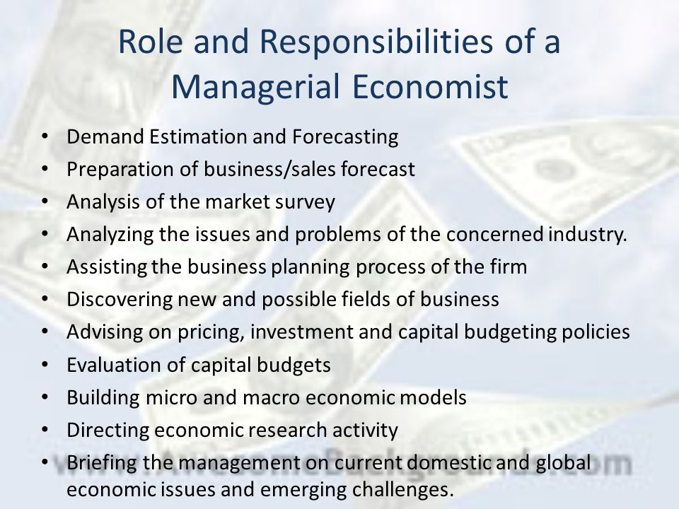 functions of managerial economics