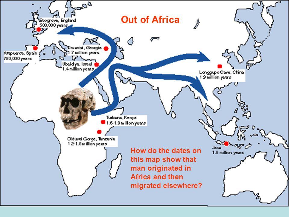 Human Origins In Africa Ppt Download