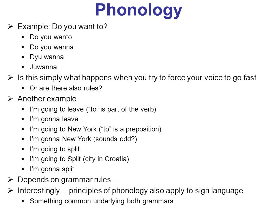 Phonology Examples Gallery Example Cover Letter For Resume