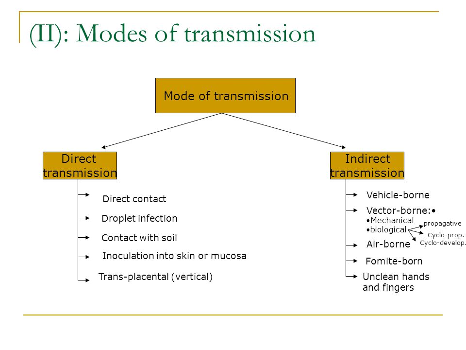 Direct Mode Of Transmission