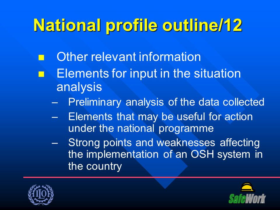 National profile outline/12