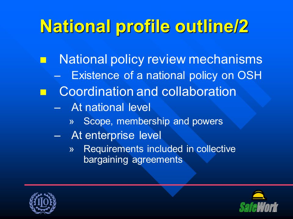 National profile outline/2