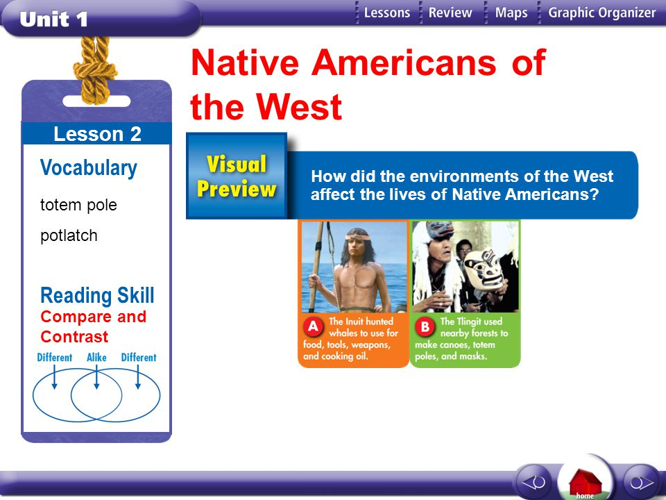 compare and contrast europe to america Tuesday, november 23, 2004 compare and contrast native american and settler cultures according to the novel, how are the two native american and settler cultures are very different from eachother the white settlers lived in brick or wood houses and they were very happy with it.