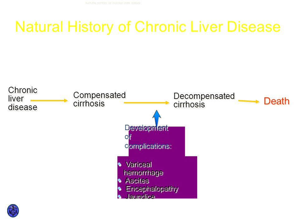 NATURAL HISTORY OF CHRONIC LIVER DISEASE