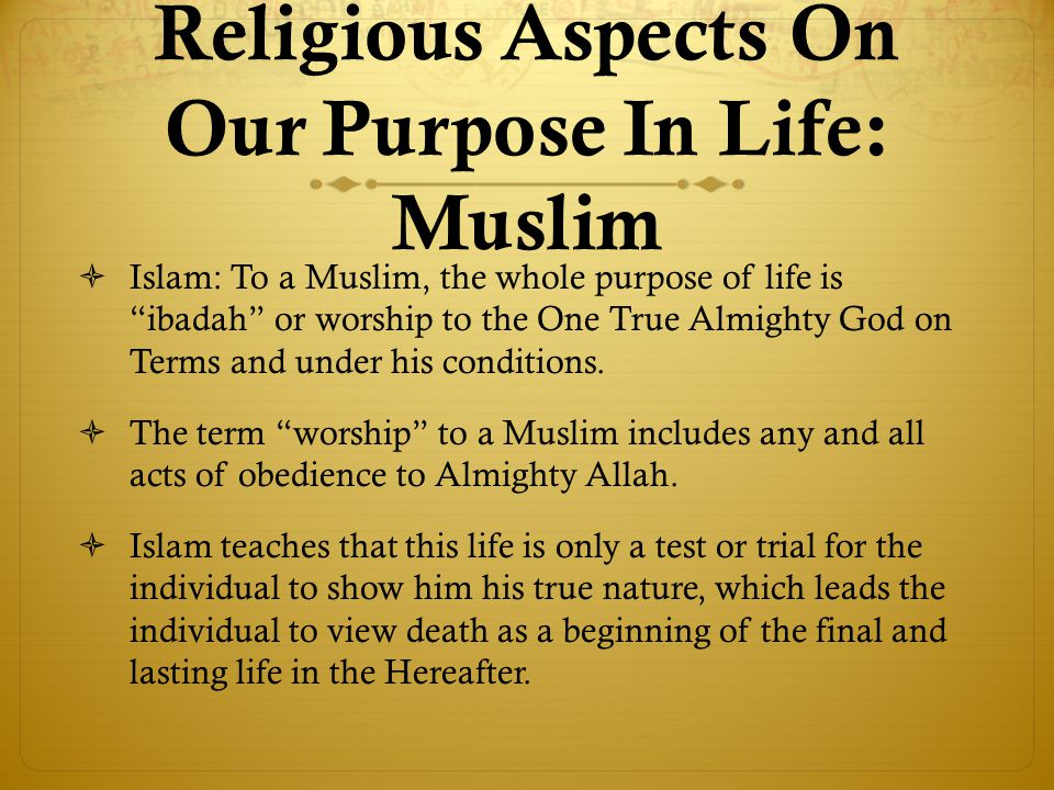 purpose in life test pdf