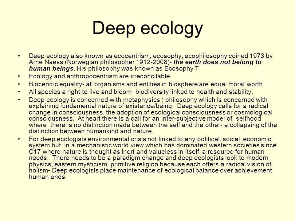 Essay on ecology