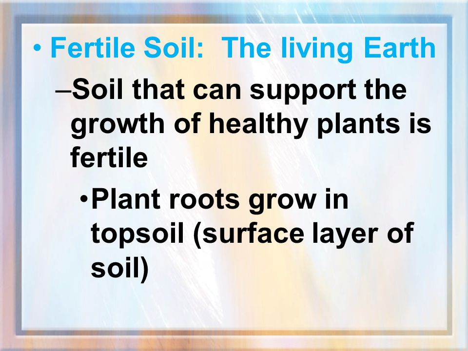Fertile Soil: The living Earth