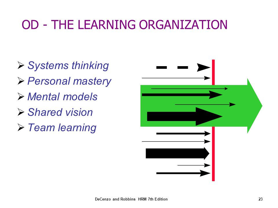 OD - THE LEARNING ORGANIZATION